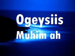 ogeysiis